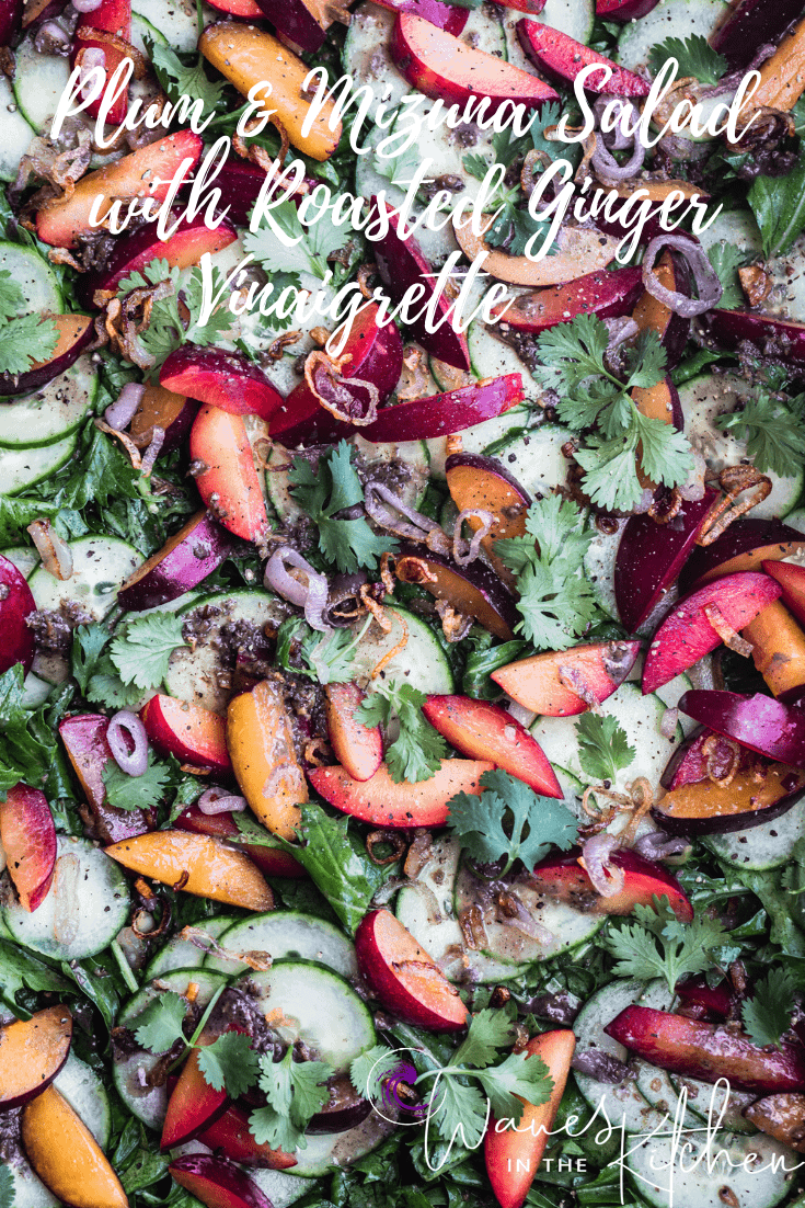 Plum & Cucumber Salad with Roasted Ginger Vinaigrette Recipe | Waves in the Kitchen | The lettuce with the dressing, cucumbers, plums, crispy shallots and cilantro.