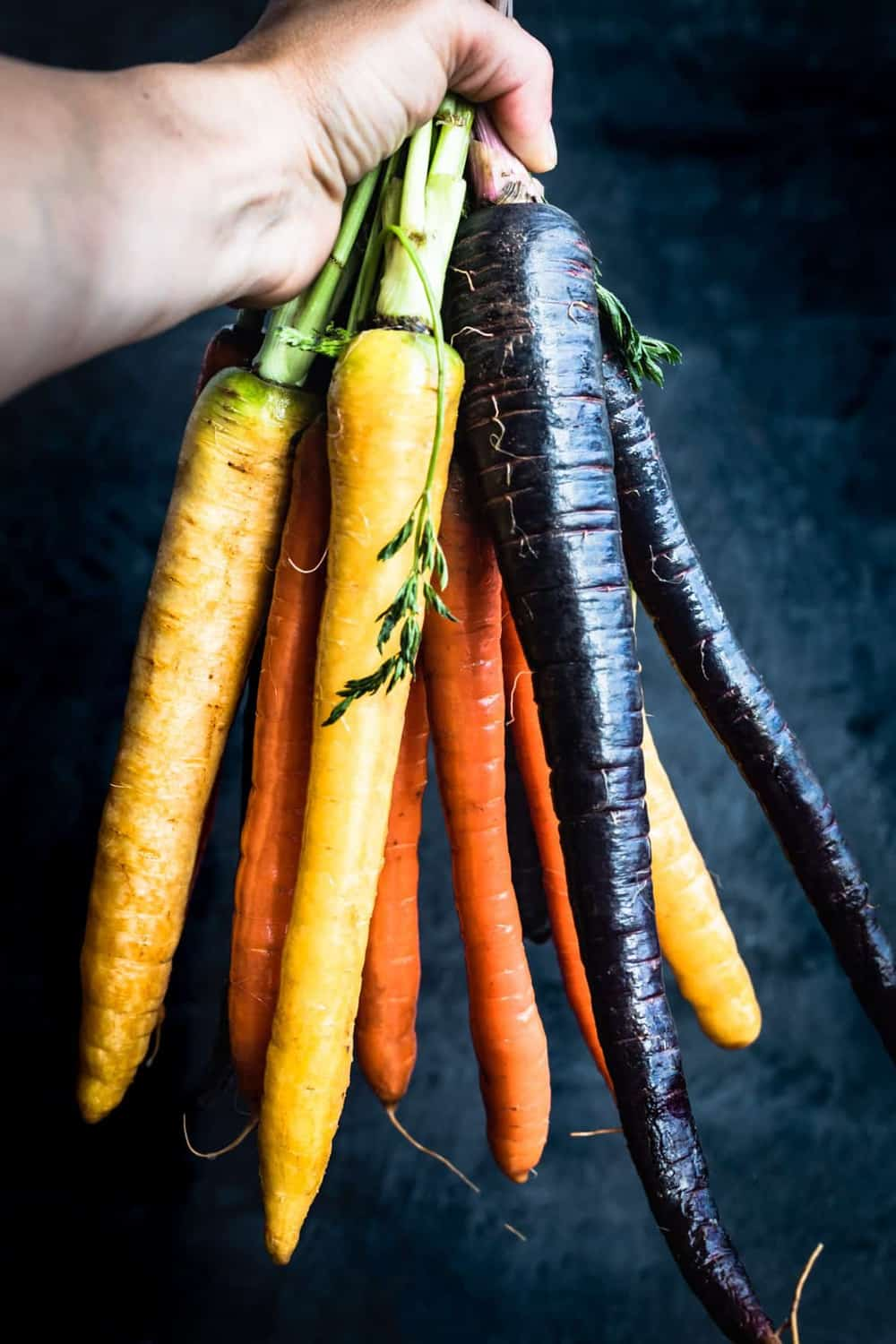 Holding rainbow carrots, on a black background.
