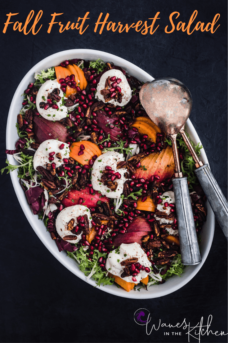 Frisee, radicchio, candied pecans, pears, pomegranates, persimmons, and burrata arranged on a serving plate. The fall fruit harvest salad is all done!