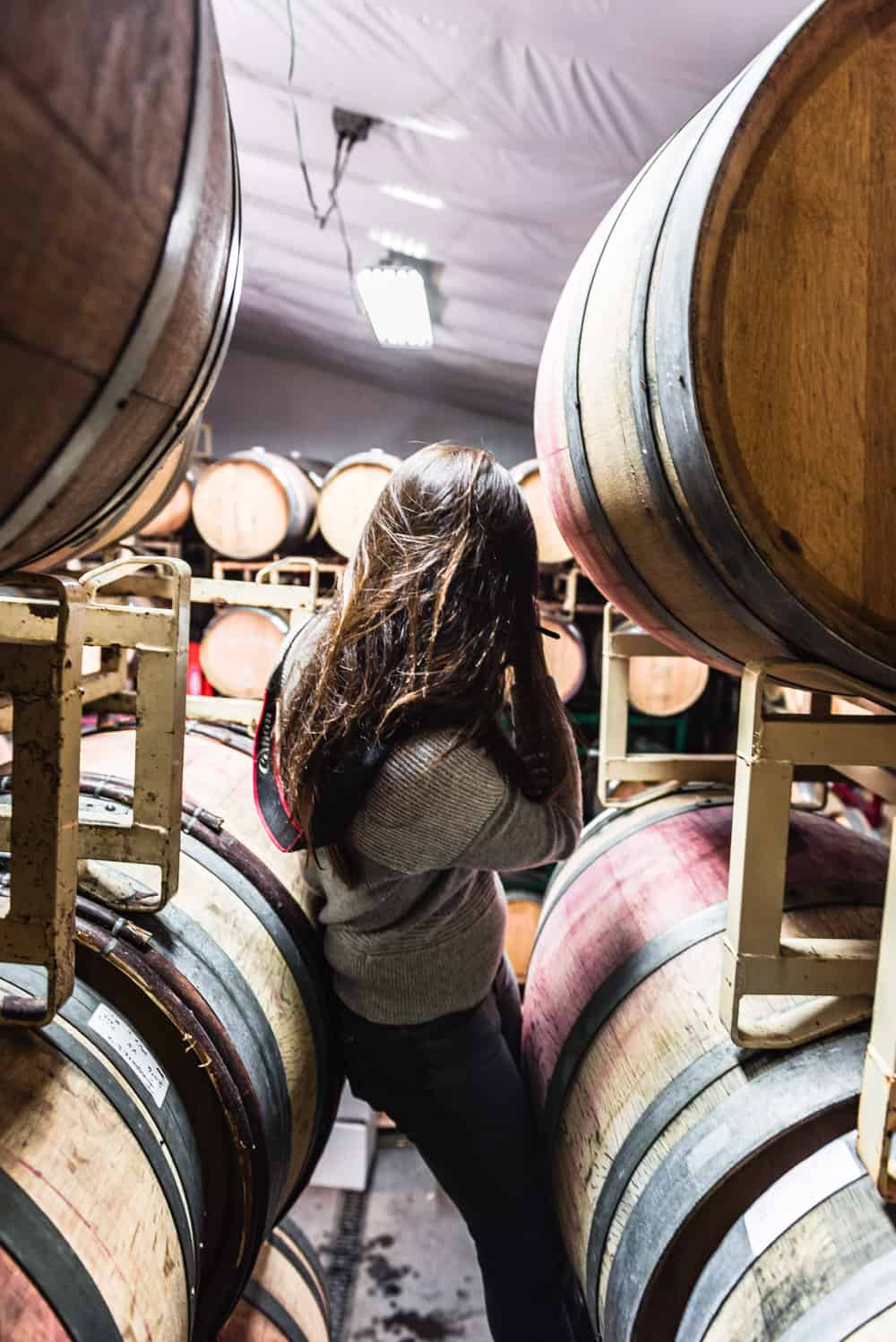 Behind the scenes shot of me taking pictures in Davero's biodynamic farm and winery barrel room.