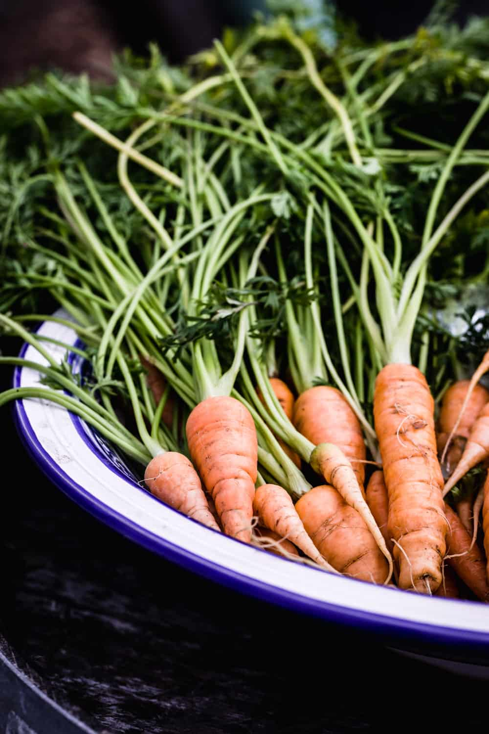 Fresh carrots from the land on display at Davero's pick up party.
