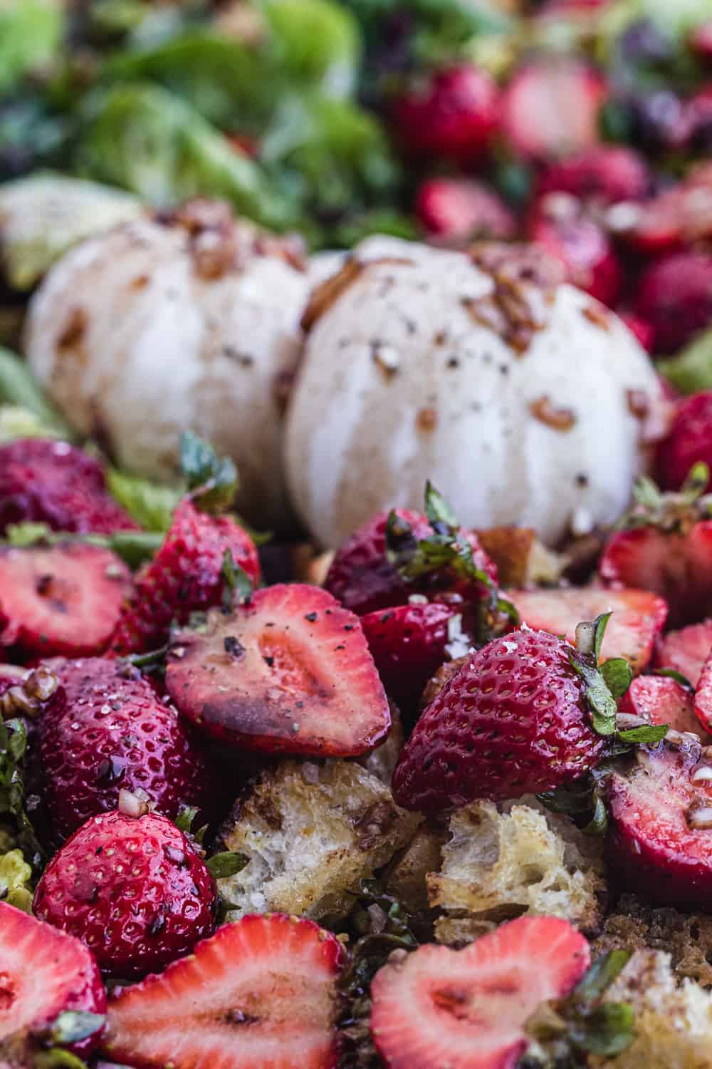 strawberry burrata panzanella, side angle shot.
