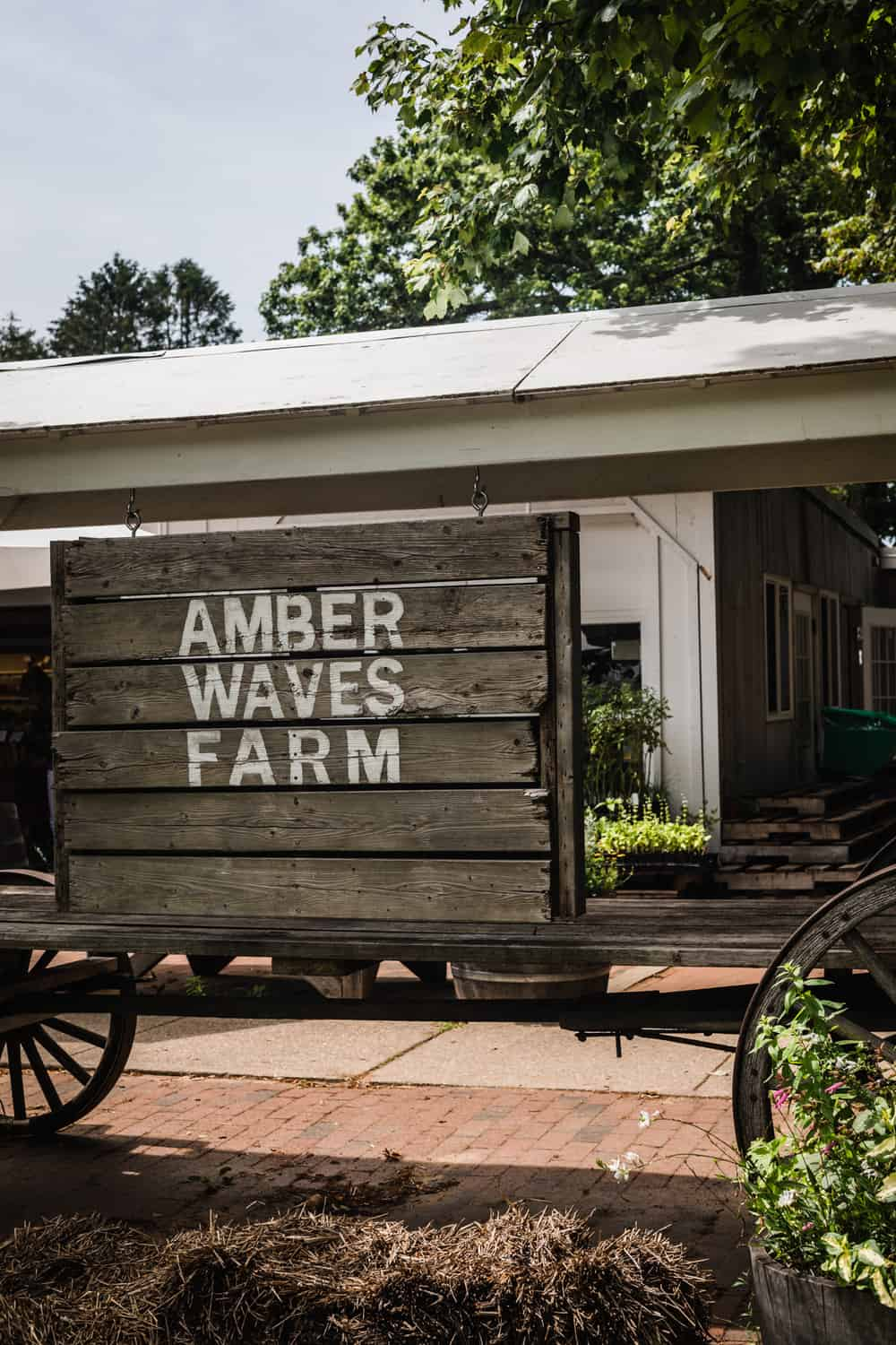 Entrance to Amber Waves Farmstand in Amagansett, off the Montauk highway.