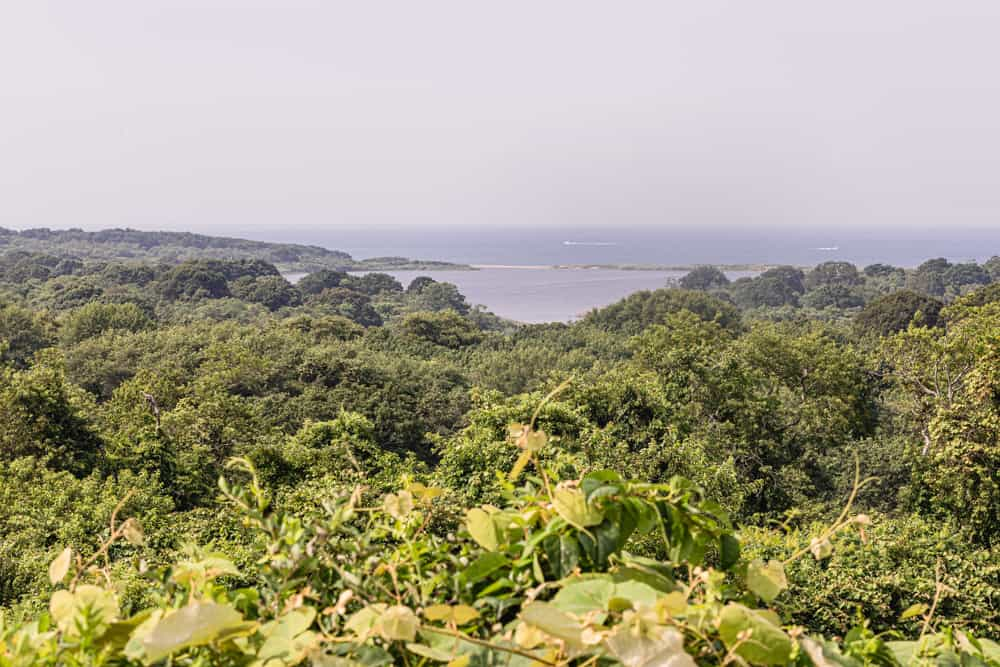 view from a lookout point in Montauk on the way to the lighthouse