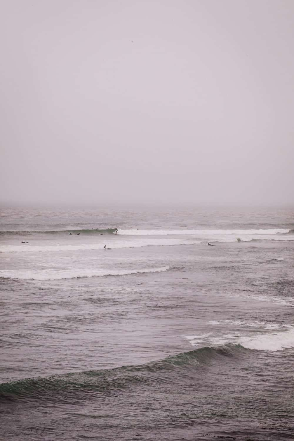 A view of surfers out on the line up in Pleasure Point on a foggy day