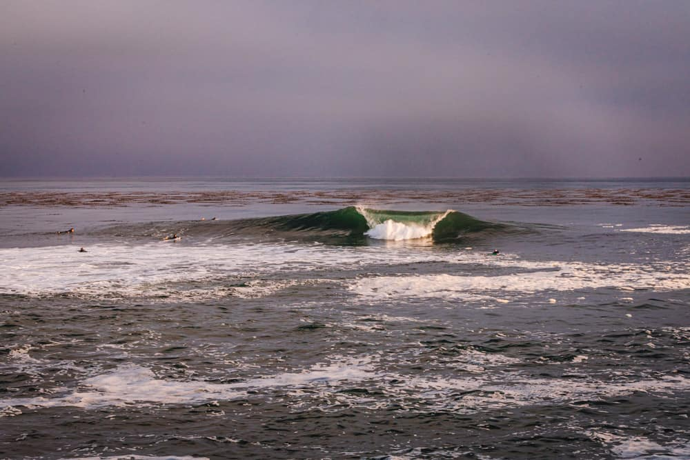 An A frame wave coming in at Sewer Peak in Santa Cruz