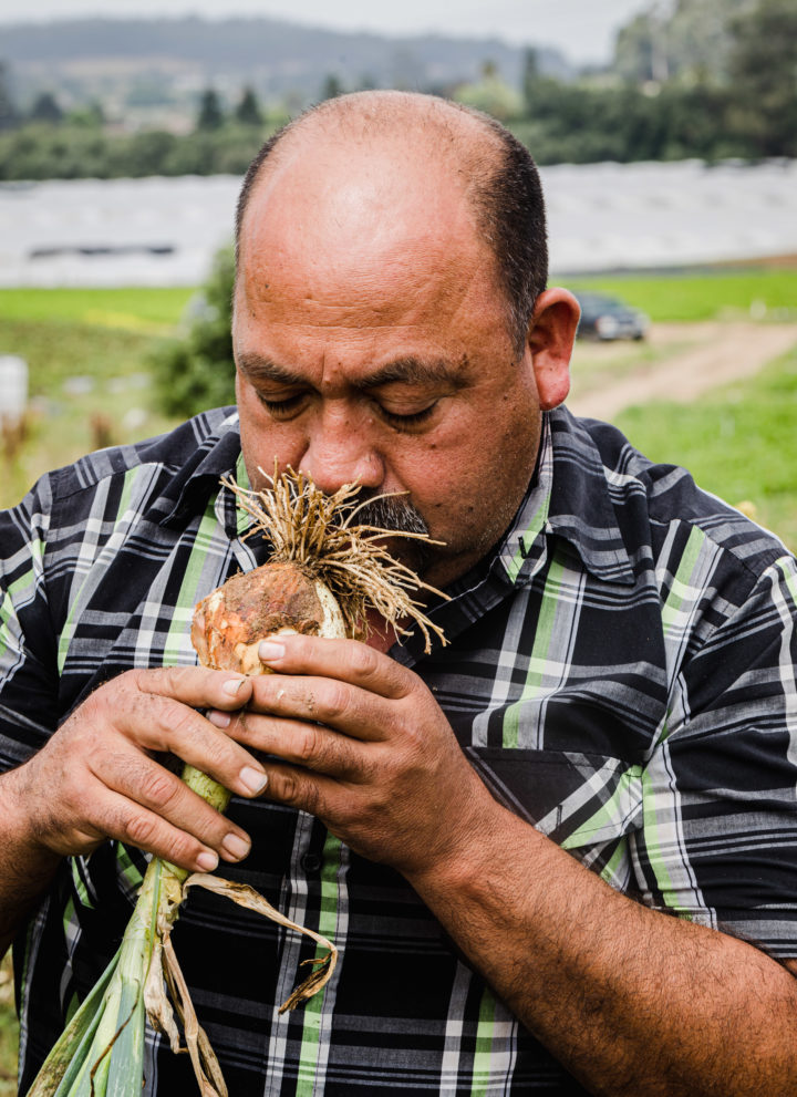 JSM Organics founder, Javier Zamora, smelling an onion.