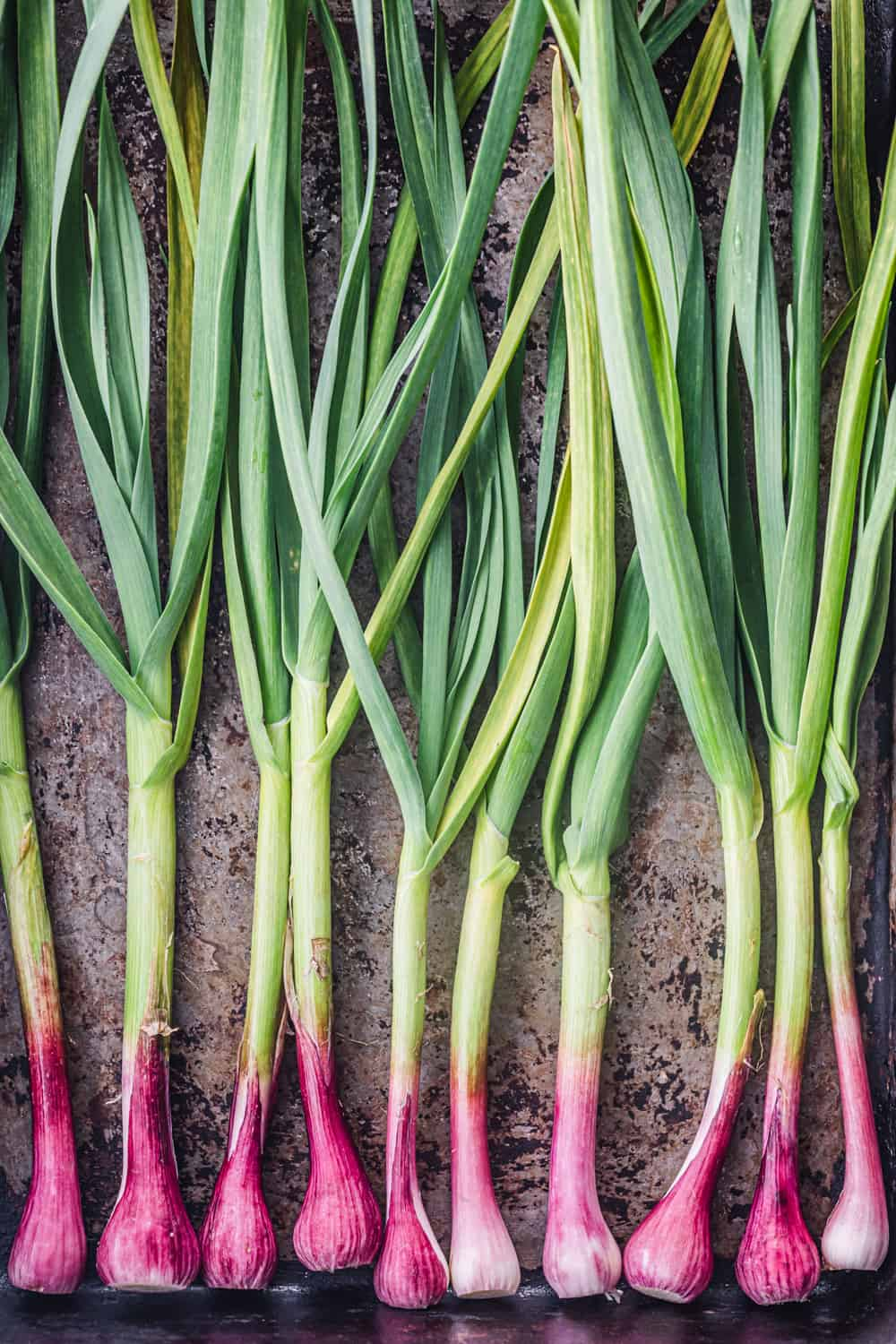 spring onions on a baking tray to be used in the farmers market salad