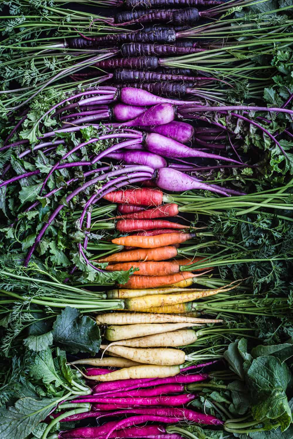 Ingredient shot of a root veggie rainbow!