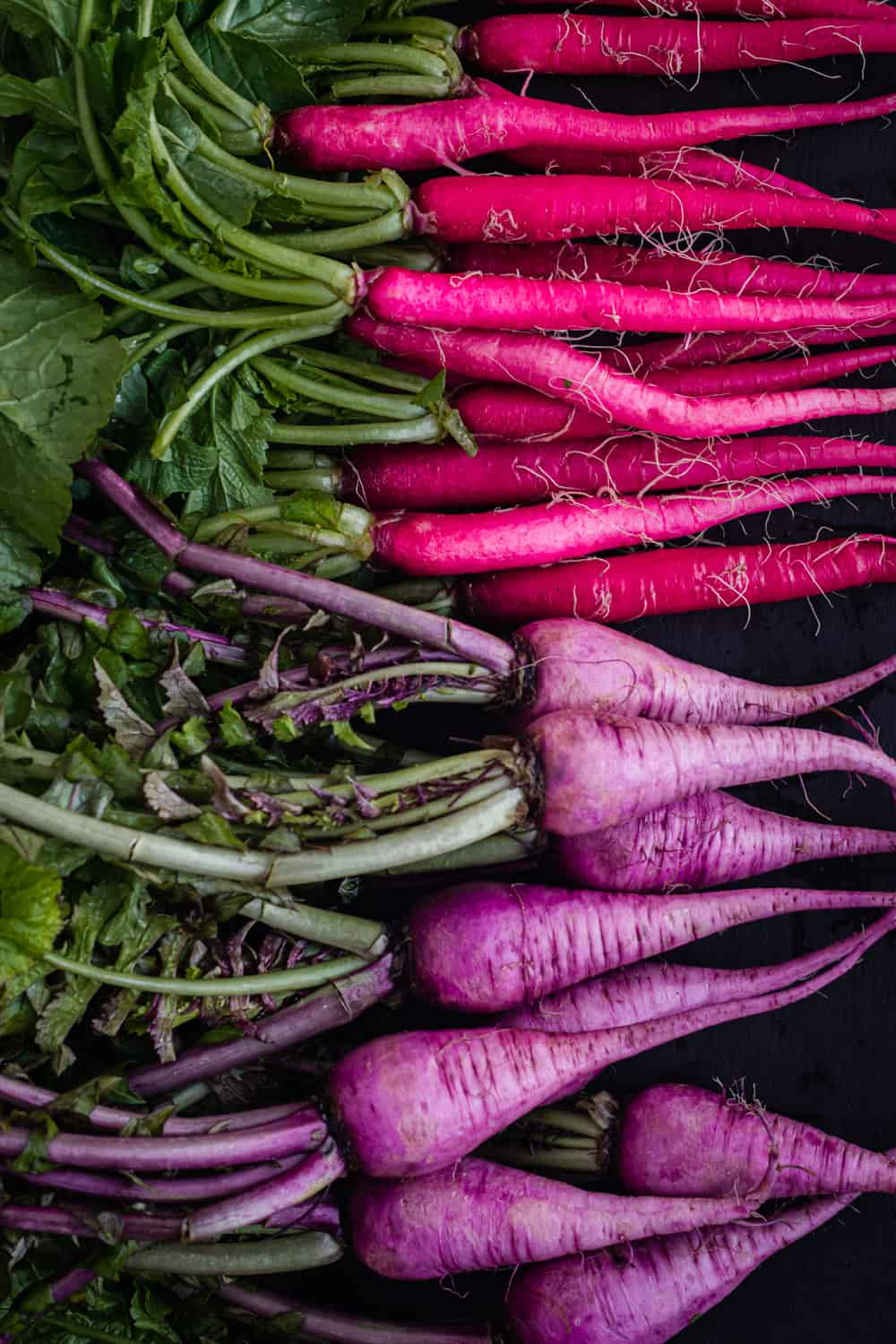 raw and whole purple ninja and hot pink Cincinnati radishes