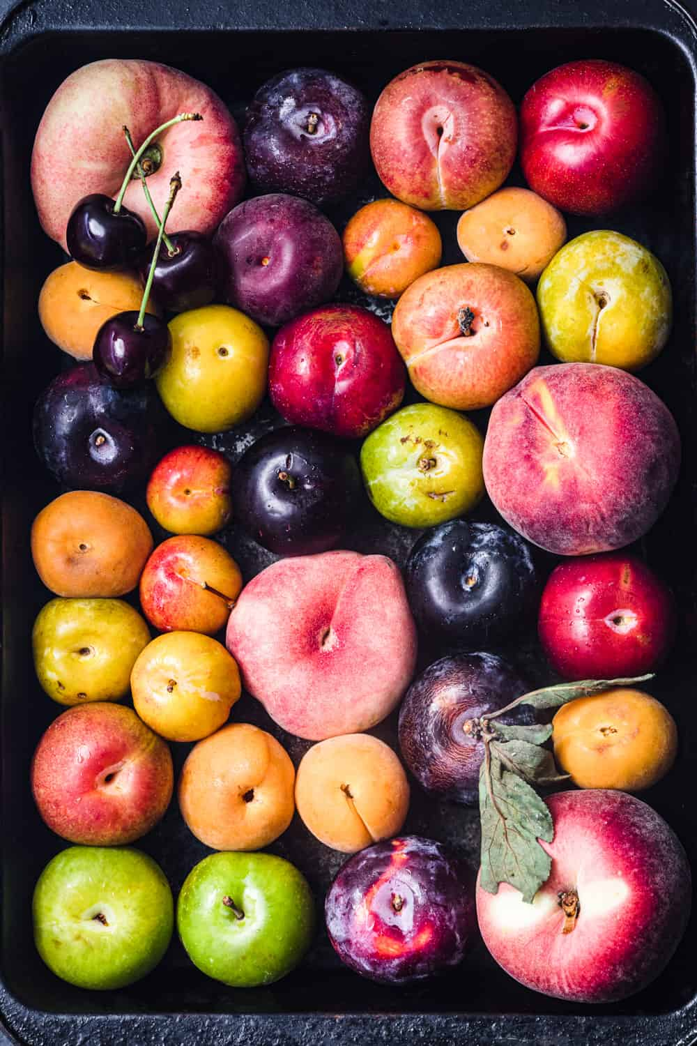 Ingredient shot of different whole raw stone fruits in lots of colors! There's peaches, plums, cherries, apricots, nectarines, and pluots.