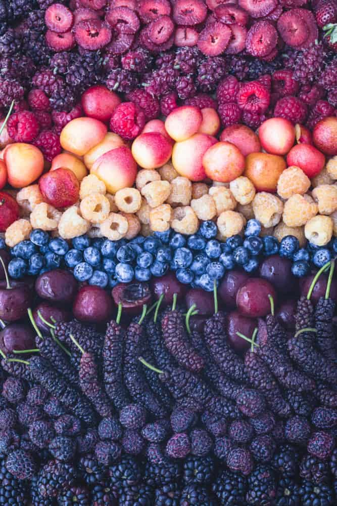 A berry rainbow! Strawberries, red, golden and purple raspberries, red and golden cherries, mulberries, blueberries and tayberries, overhead shot.