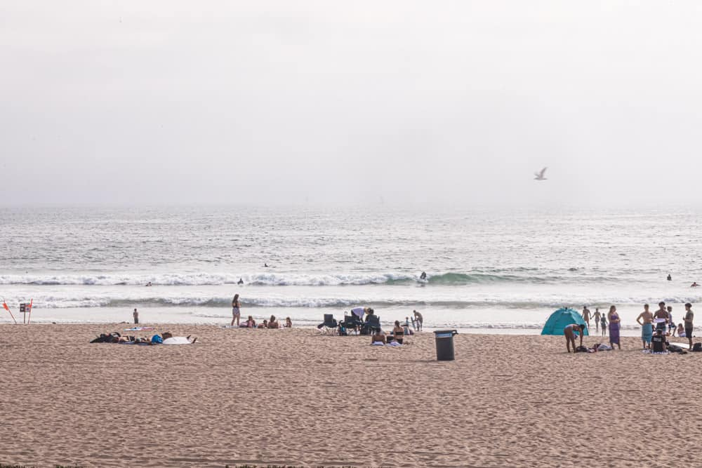 surfers in the ocean at the waves in El Porto - Manhattan Beach.