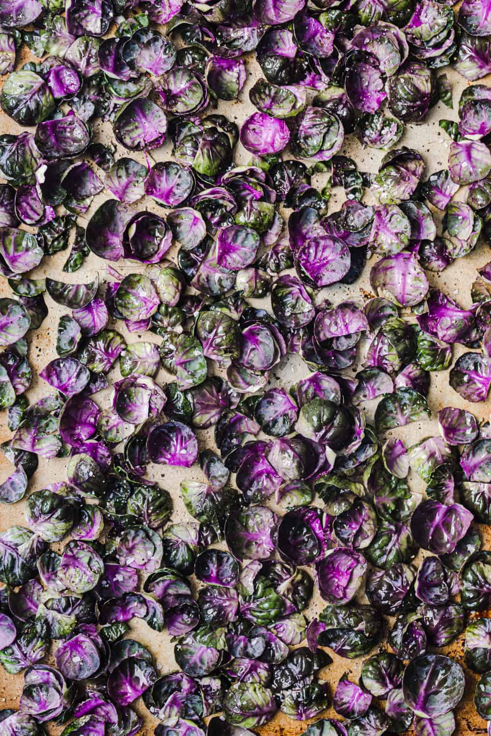 Loose purple Brussels sprout leaves tossed with olive oil, salt and pepper; on a baking sheet + overhead shot.