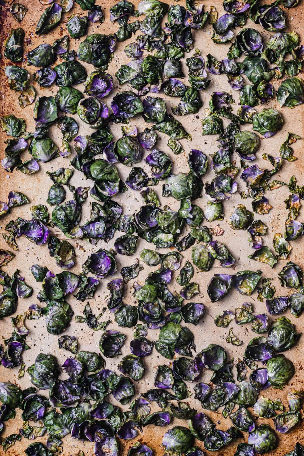Loose purple Brussels sprout leaves just out of oven, where they turned a bit blue, on a baking sheet + overhead shot.