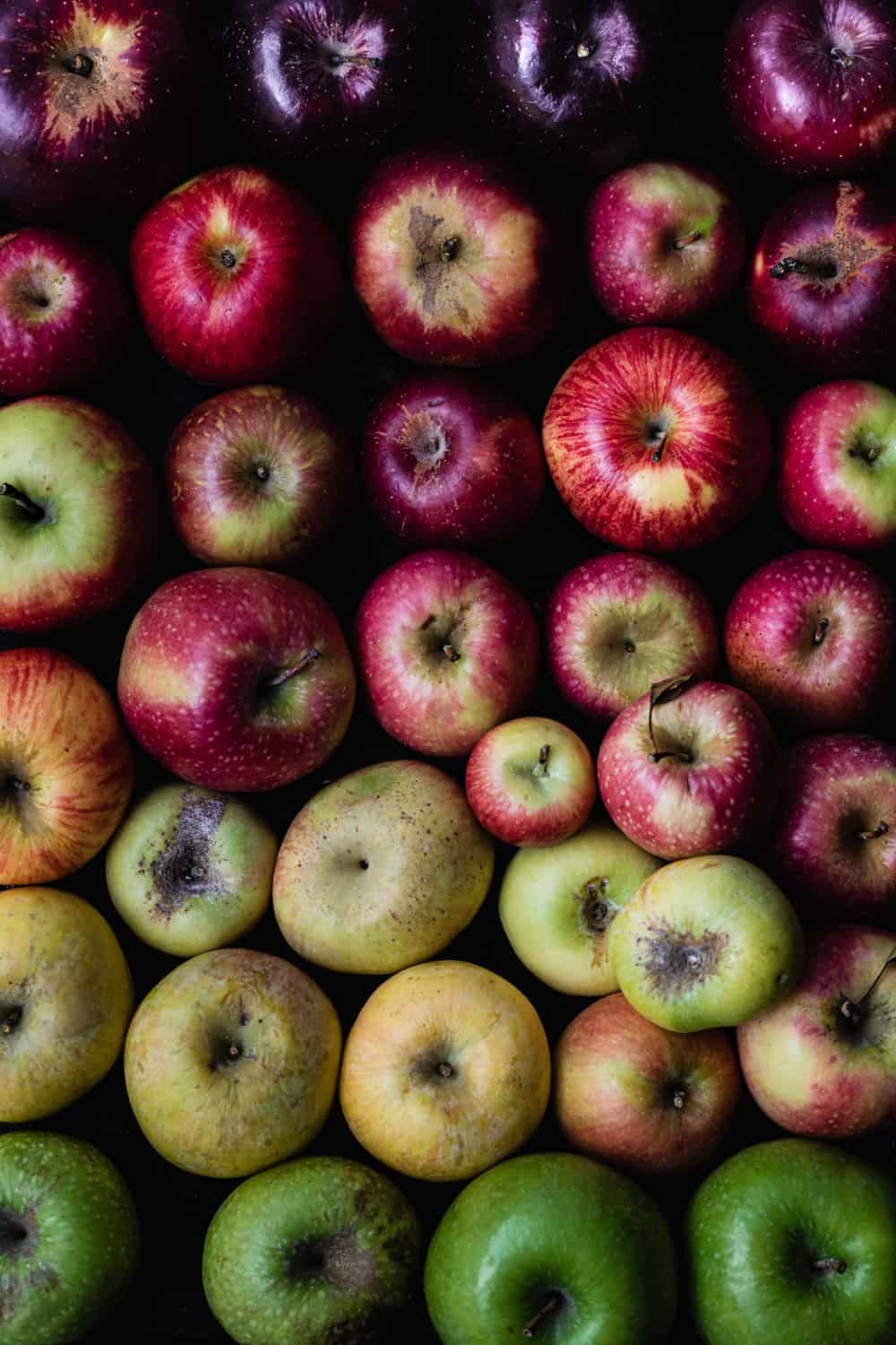 Purple, red, pink, yellow and green apples arranged like a rainbow. Overhead shot.