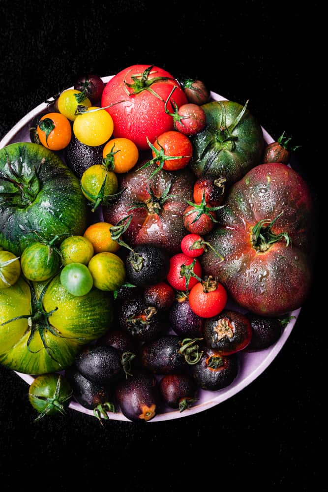 cherry and heirloom tomatoes, in all the colors of the rainbow, on a pink plate; overhead shot.